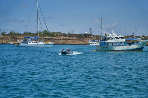 Das Abhol-Dingi kommt angerauscht, Galápagos, Ecuador 2019