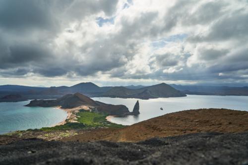 in der mitte Mangrovenwald, Bartolomé, Galápagos, Ecuador 2019