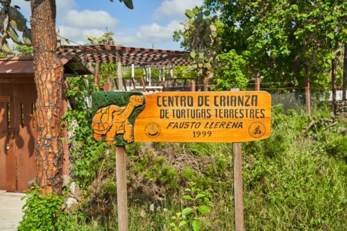 Charles Darwin Station, Santa Cruz, Galápagos, Ecuador 2019