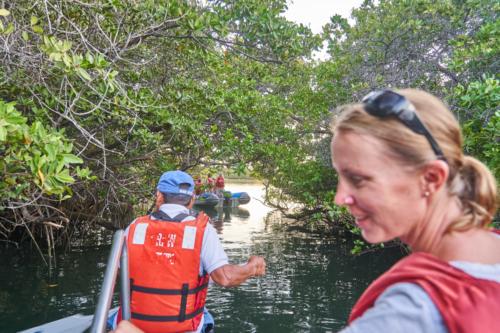 Durch die Mangroven wird gerudert, Black Turtle Cove, Galápagos, Ecuador 2019